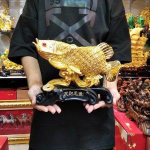 ปลามังกรสีทอง