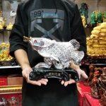 ปลาเงินคาบเหรียญ